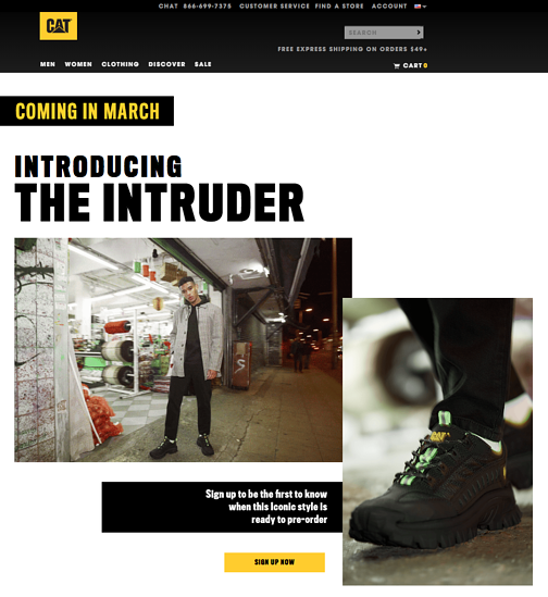 Introducing the Intruder